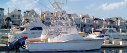 Full Circle Fishing Charters - Charleston